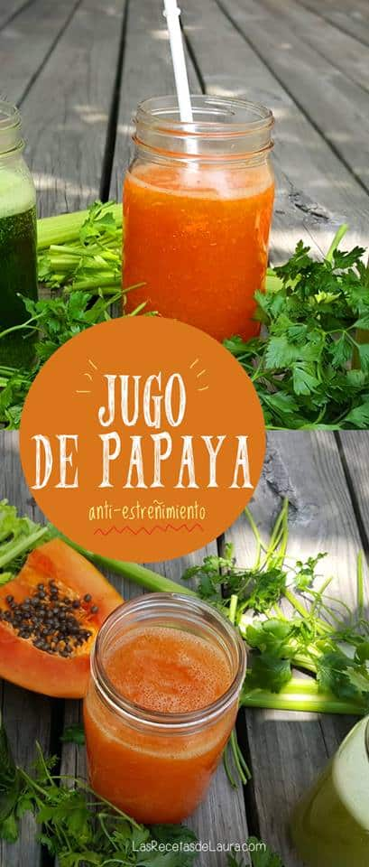 Agua de Papaya y Kiwi | Las Recetas de Kiwi